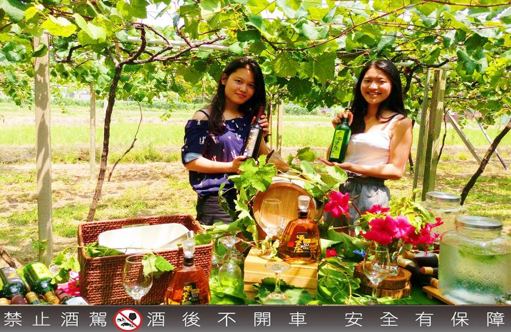 台中外埔景點》永豐社區酒堡庄葡萄樹下的浪漫品酒饗宴!易遊網探索農村玩體驗 只要買一張票小資族也能輕鬆玩!