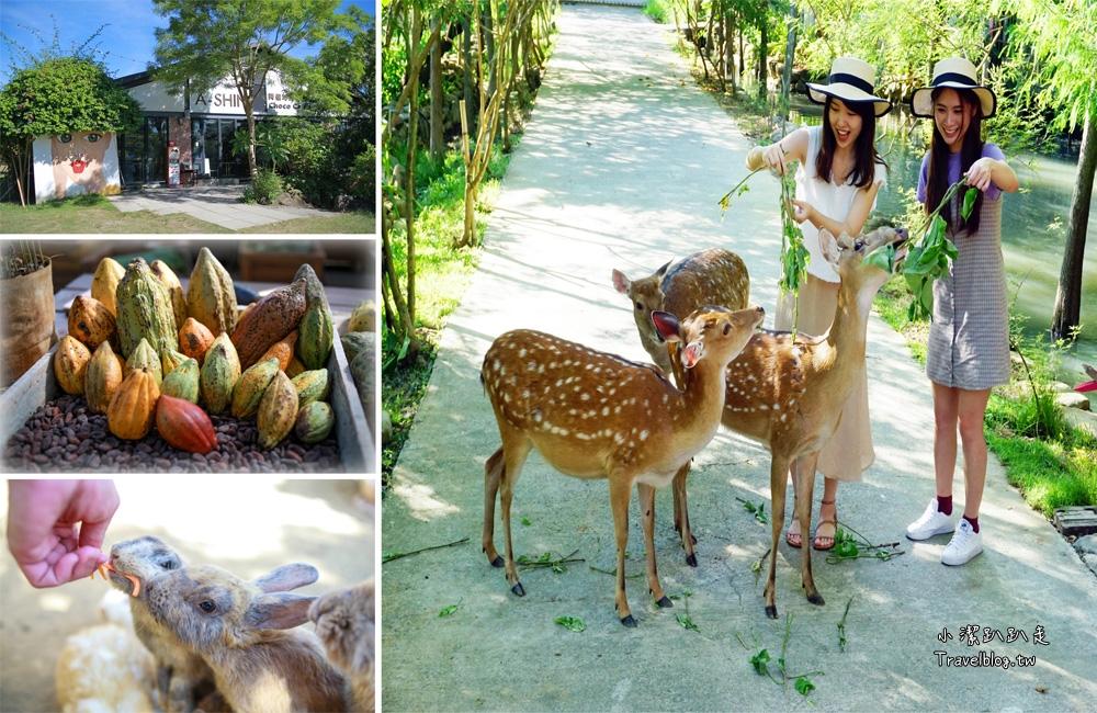 屏東景點|阿信巧克力農場:墾丁親子景點、巧克力DIY體驗,可愛梅花鹿、小兔超療癒!